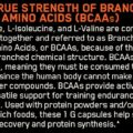ON-Optimum-Nutrition-BCAA-60-capsules-By-Bright-Commodities ingredients