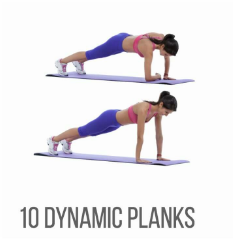 Demographic of dynamic plank