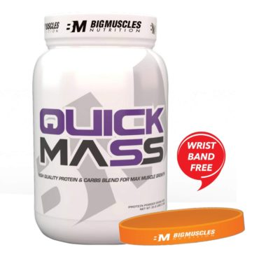QUICK-MASS-2.2lbs-Wrist-Band