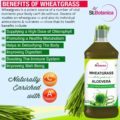 StBotanica Wheatgrass With Aloevera 500ml