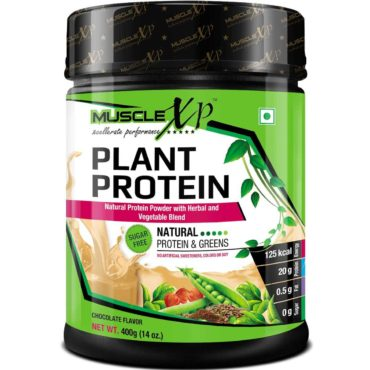 MuscleXP-Plant-Protein-Chocolate-400G-Sugar-Free-4