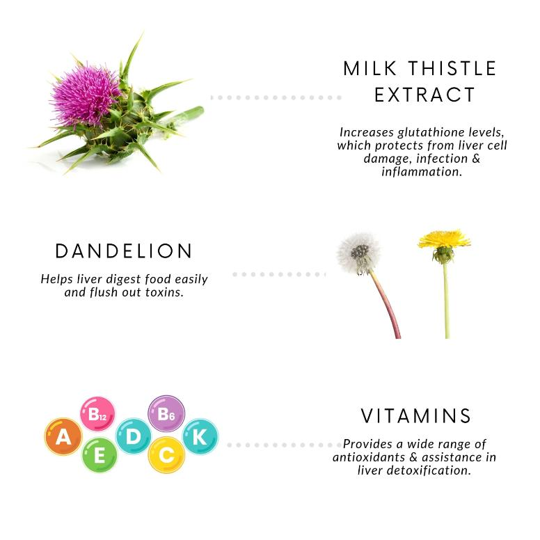 Foresta Organics Liver Detox with Milk Thistle Extract (Silymarin), Dandelion & Multi-Vitamins ingredients